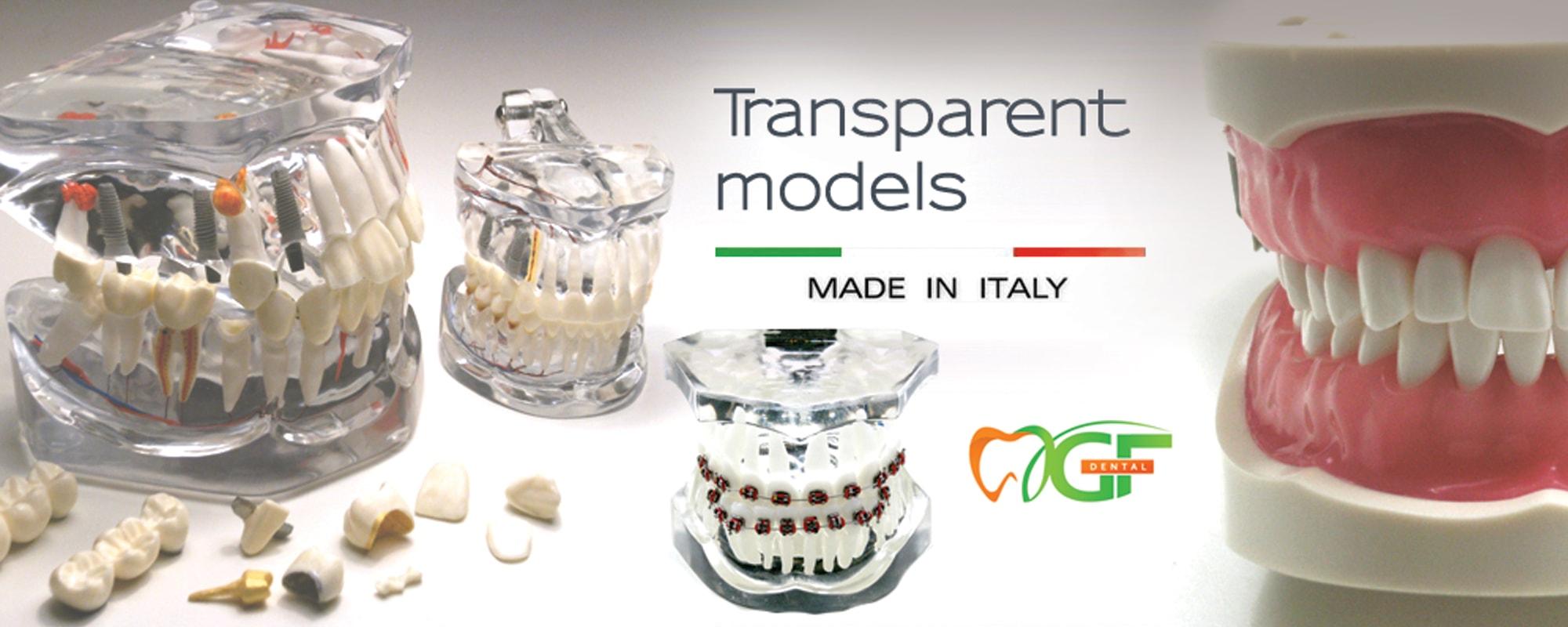 GF Dental Italy - стоматологични модели